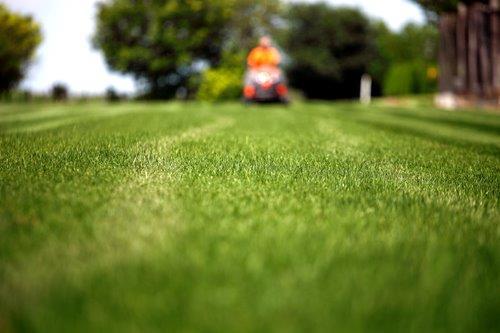 Lawn Mower - professionally-1
