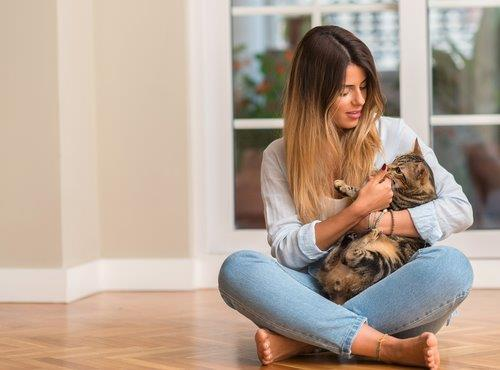 Cat - Lady holding